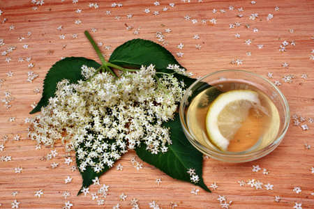 Health drink  from elderberry flowers  on a wooden table photo
