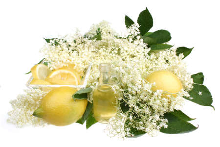 Elderflower healthy and refreshing summer drink photo