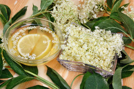 Fresh summer healthy drink with elderberry flowers photo
