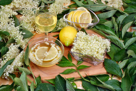 Healthy glass of fresh lemonade with elderberry flowers photo