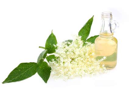 Elderflower tea, drink, juice  with a sprig of fresh flowers and leafs