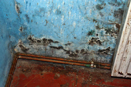 Dangerous mold fungus on the wall in a room near a heater Standard-Bild