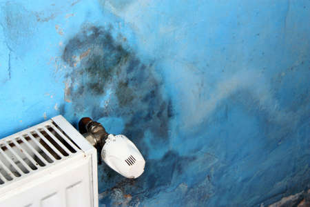 peligro: Hongo molde peligroso en la pared en una habitación cerca de un calentador