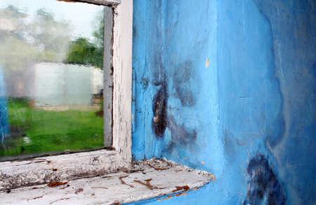 mouldy: Toxic mold growing on the wall in the room next to the window Stock Photo