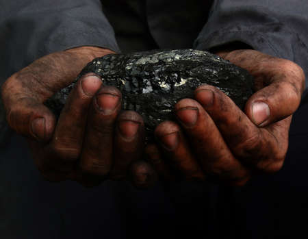 on hands: Coal in the hands of a miner