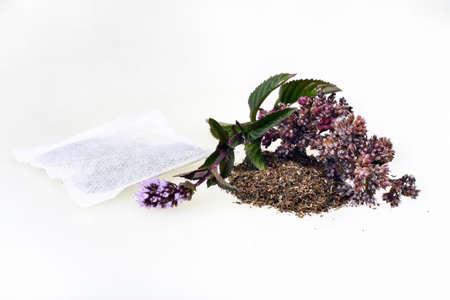 mentha: Mint pulegium menta hierbas de t� aislados en un fondo blanco