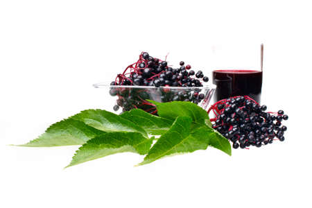 Fresh fruit elderberry on white isolated background