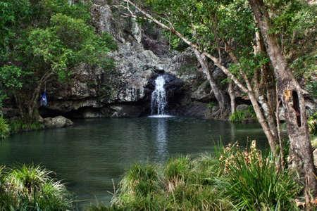 ブリスベン、サンシャインコースト、クイーンズランド州の近く Kondalilla 国立公園内の滝