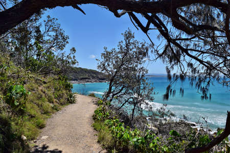 Forest way trail with an amazing ocean scenery at Noosa National Park, Queensland Australia 写真素材