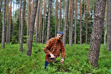 Young man collects blueberries with a special comb in the forest Zdjęcie Seryjne