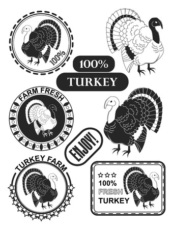 gobble: Set of premium turkey meat labels and stamps. Vector illustration