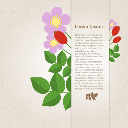 rose hips: Floral composition with rose hips on a beige background with space for your text. Card. Vector illustration