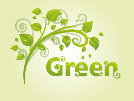 Elegant green branch with leaves and text for text. You can use it as an advertising banner or logo for the company. Vector illustration Illustration