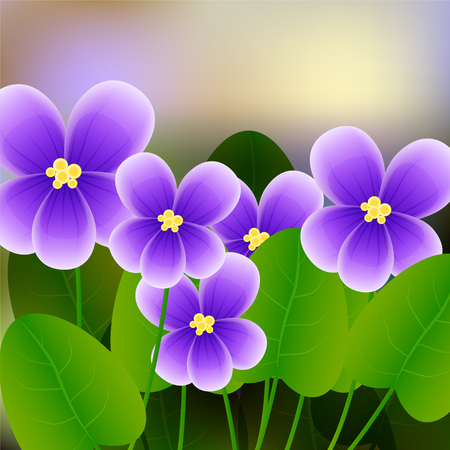 Spring background with blossom brunch of violet flowers. illustration