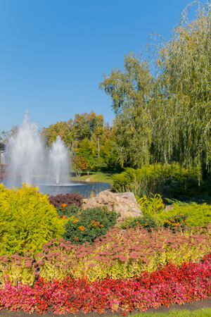 Weeping willow in the shade of which you can have a good rest on the shore of a pond with a fountain Stok Fotoğraf
