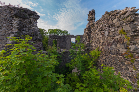 Stone ruins of an ancient defensive wall, overgrown with green bushes and trees