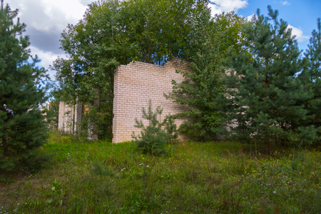 a brick abandoned building in the middle of a forest glade surrounded by dense forest Imagens