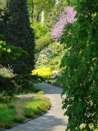 Park promenade alley on the background of colorful ornamental plants and flowers 写真素材