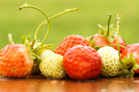 White and red strawberries lie in the sun. Delicious and sweet dessert berry. Vitamins .For your design Imagens