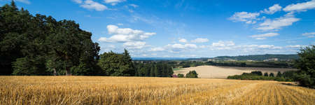 A yellow wheat field with a view onto a agricultural valley below. Stock Photo