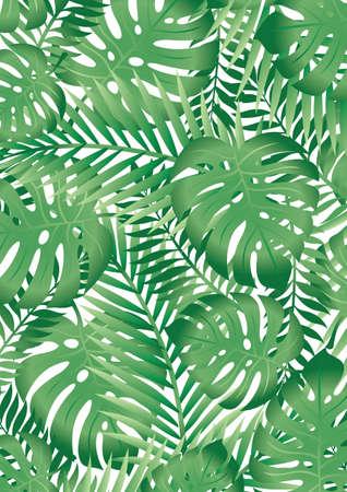 ferns: Hojas tropicales Vectores