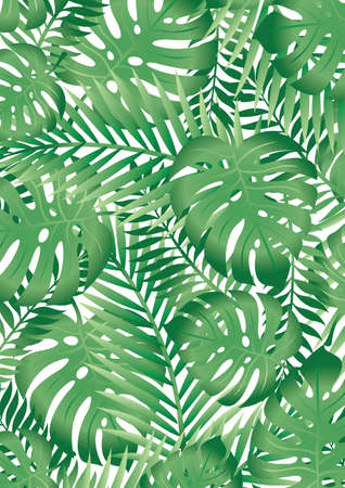 ferns: Tropical leaves Illustration