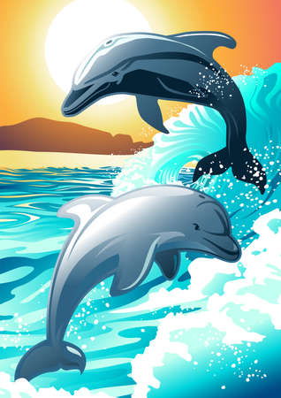 Two dolphin swimming at a beach at sunrise . Vector