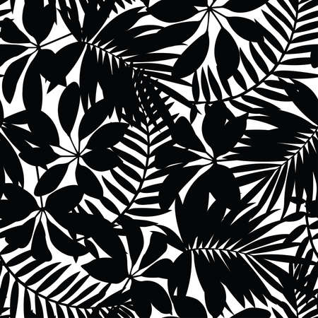 palm leaf: Black and white tropical leaves seamless pattern. Illustration