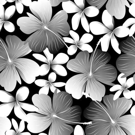 フランジパニのシームレスなパターンを持つ白い熱帯ハイビスカスの花。  イラスト・ベクター素材