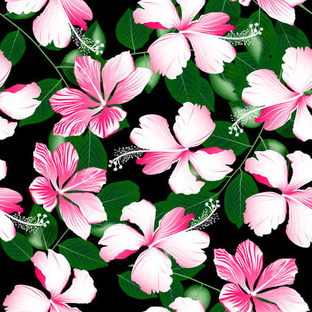 variegated: Variegated pink tropical hibiscus flowers seamless pattern .