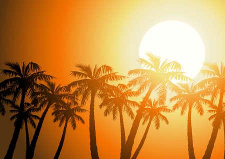 palmeras tropicales silueta al amanecer. Ilustración de vector