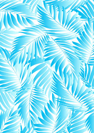 fern leaf: Tropical aqua leaves on a white background .
