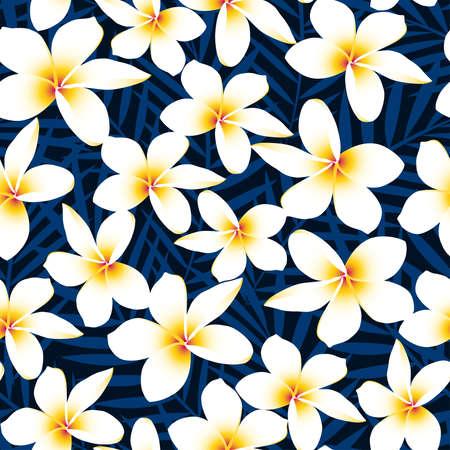 plumeria flower: Tropical white frangipani plumeria flower seamless pattern .