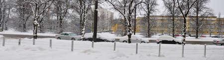 immobile: fila de coches bajo la nieve