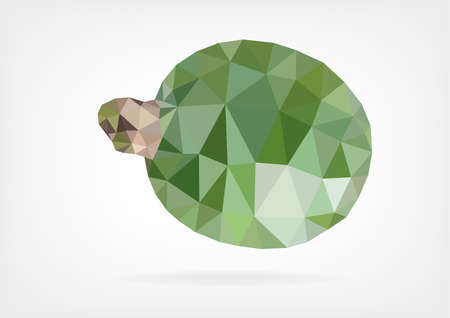 feijoa: Low Poly Feijoa fruit