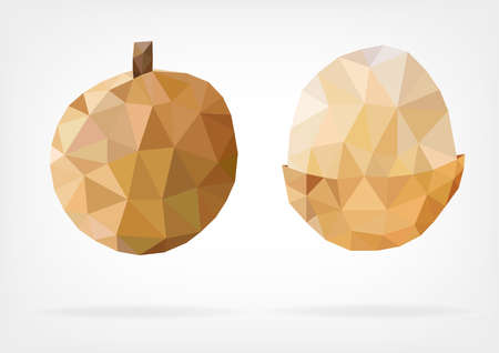 flesh: Low Poly Longan fruit