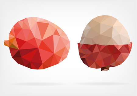 subtropical: Low Poly Lychee fruit Illustration