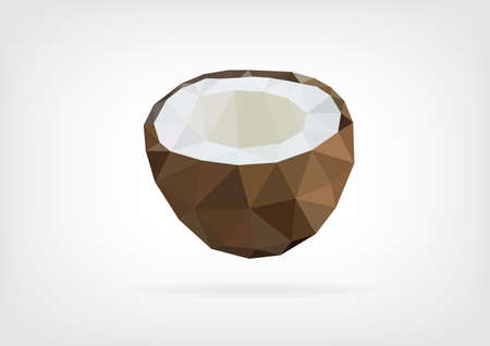 palm oil: Low Poly Coconut