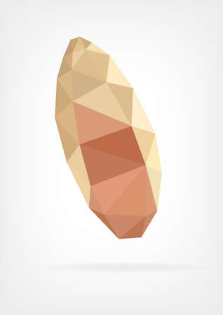 brazil nut: Low Poly Brazil nut