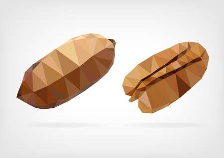 kernels: Low Poly Pecan nut