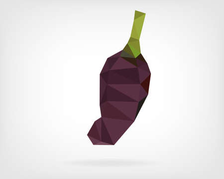 hungarian: Low Poly Black Hungarian Pepper Illustration