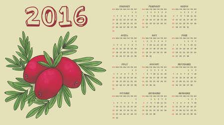 rose hips: 2016 rose hips calendar Illustration