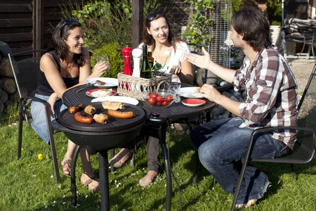 Barbecue party in the garden Stock Photo - 10395433
