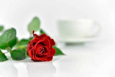 Beautiful red rose with cup of coffee in the morning 版權商用圖片