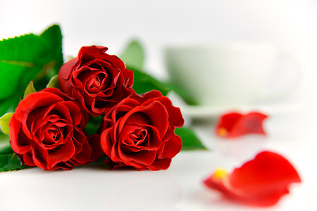 Red roses background for mothers day. White background