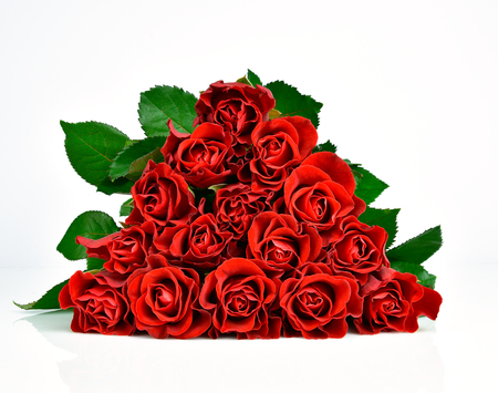 Beautiful red roses on the white background. Mothers day