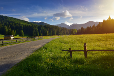 Road to Chocholowska valley at sunset. Tatra mountain Poland