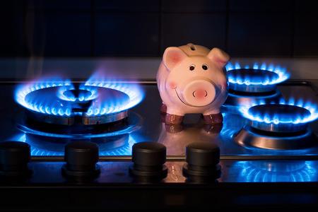 高価な天然ガスのコスト