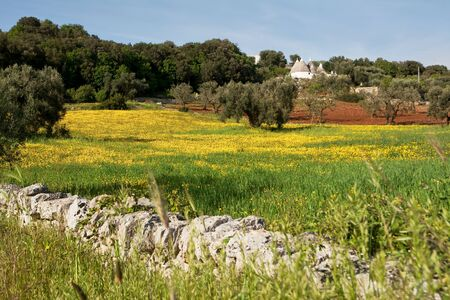 trulli: trulli in the countryside with grass and yellow flowers Stock Photo