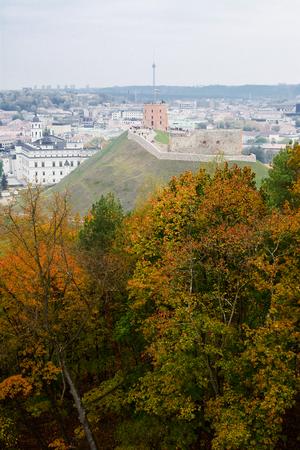 vilnius: Gediminas Castle in Vilnius (Lithuania)